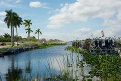 Everglades - Florida Royalty Free Stock Photography