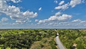 Everglades Nationaal Park stock foto's