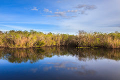 Everglades National Park. Everglades pond seen from the Anhinga Trail Stock Image