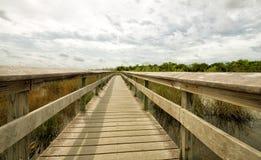 Everglades National Park, Florida. USA Stock Images
