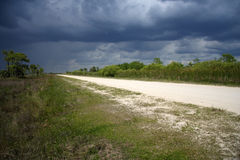 Everglades Rainstorm. Dark storm clouds form over the scenic Turner River Road, Big Cypress National Preserve Royalty Free Stock Image