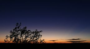 Everglades Sunset Silhouette Stock Image