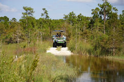 Everglades Swamp Buggy Tour Stock Photos