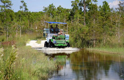 Everglades Swamp Buggy Tour Royalty Free Stock Photography