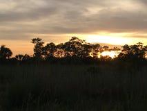 Everglades Swamp Lands In Everglades Florida. Bu Everglades Swamp Lands In Everglades Florida stock image