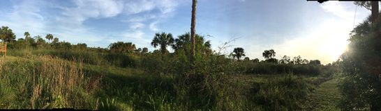 Everglades Swamp Lands In Everglades Florida. Sunshine abounds Everglades Swamp Lands In Everglades Florida royalty free stock photos