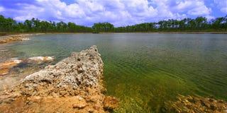 evergladesnationalpark USA Arkivfoton