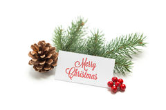 evergreen украшения рождества цветет вал красного цвета poinsettia приветствиям Стоковое фото RF