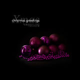 evergreen украшения рождества цветет вал красного цвета poinsettia приветствиям стоковые изображения