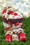evergreen украшения рождества цветет вал красного цвета poinsettia приветствиям Стоковая Фотография RF
