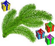 evergreen ilustração stock