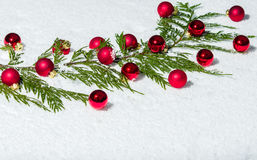 Evergreen bough with red ornaments Stock Images