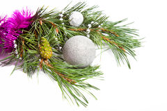Evergreen branch with pink tinsel and silver ball Royalty Free Stock Image