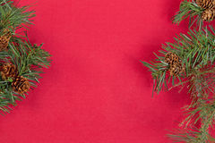 Evergreen branches forming borders on red background Stock Photos