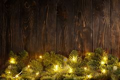 Evergreen branches and garland Stock Photography