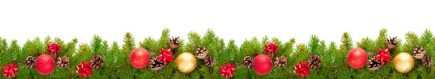 Evergreen branches on white Stock Image
