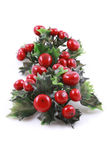 Evergreen do Natal imagem de stock royalty free