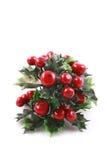 Evergreen do Natal foto de stock