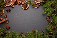 Evergreen förgrena sig på vit Arkivbilder