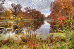 Evergreen fall vista. South view of Evergreen Lake in Oak Openings Metro Park, Lucus County Ohio Royalty Free Stock Photography