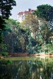 Evergreen flora around lake, trees and plants diversity in Trivandrum, Thiruvananthapuram Zoo Kerala India. Evergreen flora around lake, trees and plants Royalty Free Stock Photo