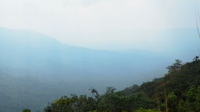 Evergreen forest landscape at Khao Yai national park stock video footage