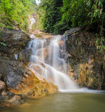 Evergreen forest waterfall Stock Photo