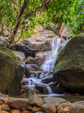 Evergreen forest waterfall Stock Image
