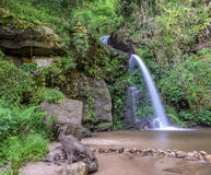 Evergreen forest waterfall in Chiang Mai, Thailand Royalty Free Stock Image