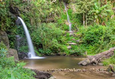 Evergreen forest waterfall in Chiang Mai, Thailand Royalty Free Stock Photography