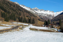 Evergreen forests in the valley covered with the first snow. The landscape of the Dolomites in the Stock Image