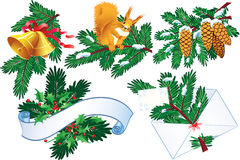 Evergreen and holly collection. For decoration - vector illustration Stock Image