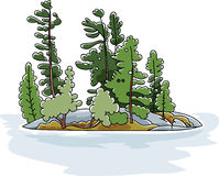 Evergreen Island Royalty Free Stock Images