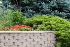 Evergreen Landscape Design. A landscaped brick wall accented with evergeen juniper and blue spruce showing design possibilities for contractors and homeowners Stock Photos