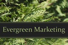 Evergreen Marketing Message Stock Photo