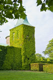 Evergreen-overgrown Tower Stock Photos