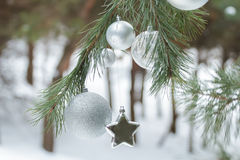 Evergreen pine tree with Christmas ornaments and silver glitter star Stock Photo
