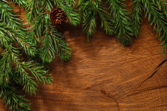 Evergreen tree background. Evergreen tree branches on wooden background Royalty Free Stock Image