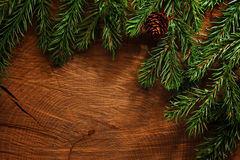 Evergreen tree background Stock Photography