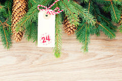 Evergreen tree and christmas tag Stock Images