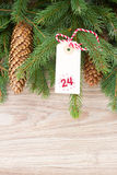 Evergreen tree with cones and christmas tag Royalty Free Stock Photography