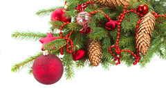 Evergreen  tree with red christmas decorations and Royalty Free Stock Photo