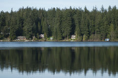 Evergreen trees reflected in water Stock Photo