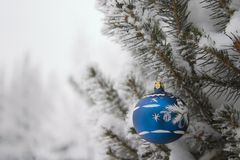Evergreen With Christmas Decoration Stock Image