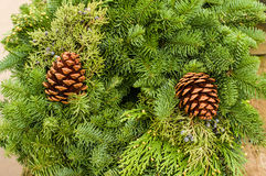 Evergreen wreath with pine cones and cedar Royalty Free Stock Image