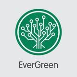Evergreencoin faktiskt valutamynt Vektorrengöringsduksymbol av EGC Arkivfoto