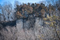 Evergreens on Top of Cliff in Decorah, Iowa Stock Photography