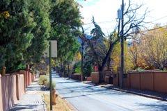 Evergreens Wykładają ulicę Obrazy Stock