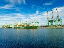 Everport-Anschluss- Hafen von Los Angeles lizenzfreie stockfotos