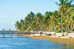 Daily Hotel Beach Clean-up Belize royalty free stock photos